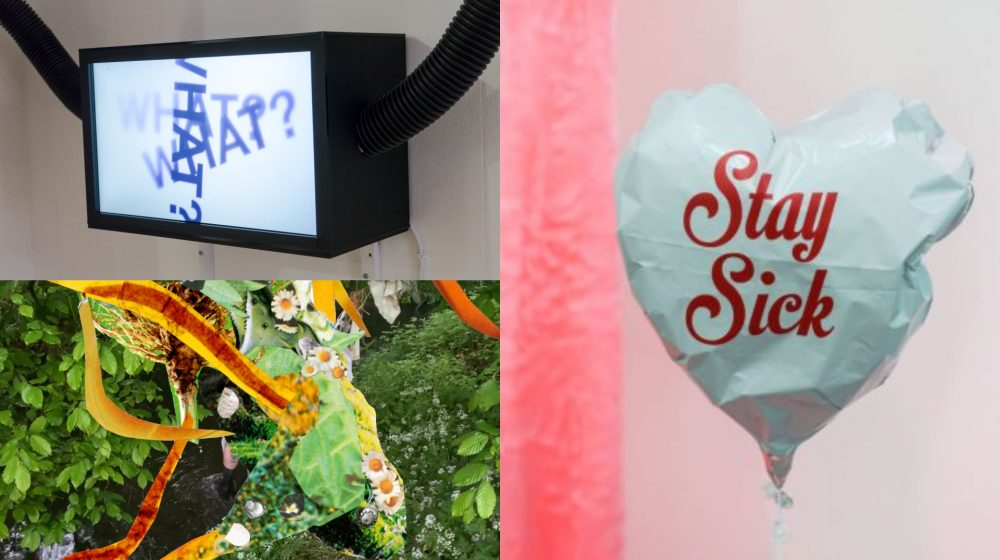 Three images in a composite – top left image: a black rectangular lightbox with a white screen has the word what with a question mark written 3 times on it, black pipes leave the box on the left and right sides. Top right image: a white heart shaped balloon has the words stay sick written in the middle. Bottom left image: a collage of green leaves, white daisies with yellow centres, and stripes of yellow and red streak across the image.